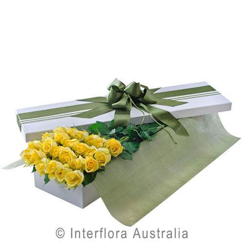 Everlasting Love (Yellow), Presentation Box of 24 Long Stemmed Yellow Roses