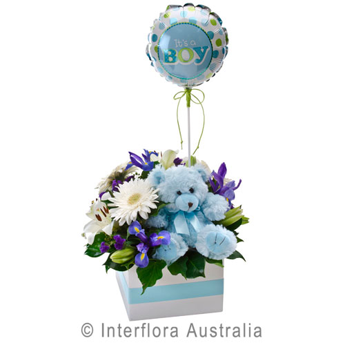 It's A Boy!, Flower Box with a Teddy Bear and Balloon