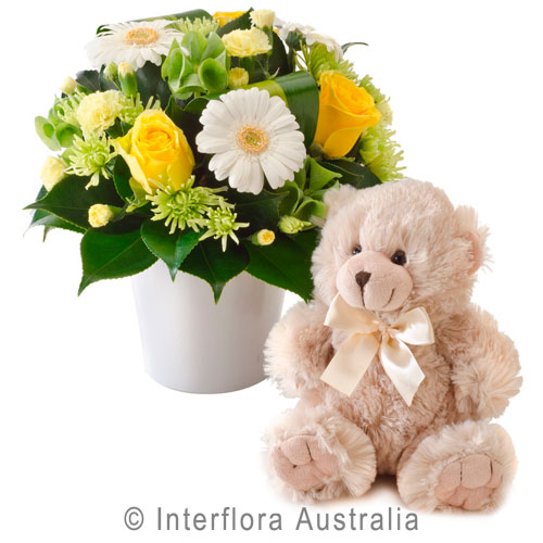 Congratulations (Neutral), Bright Mixed Arrangement with a Teddy Bear
